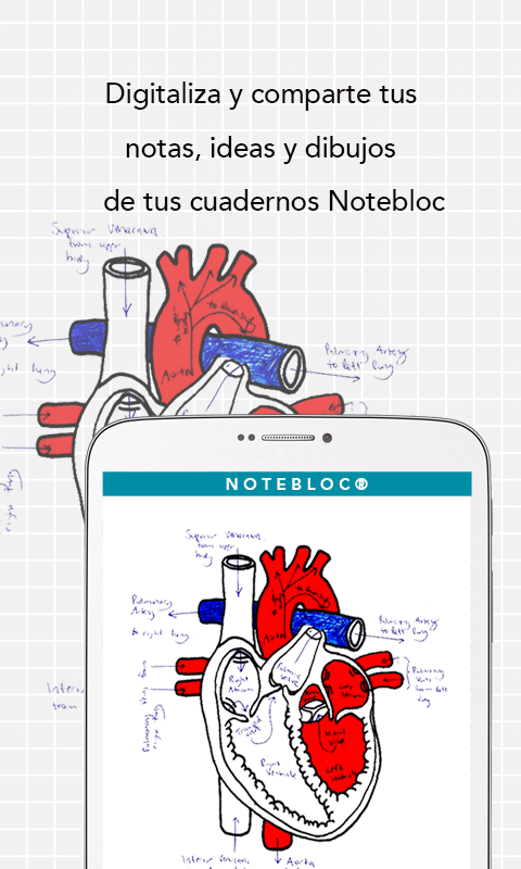 Notebloc: captura de pantalla