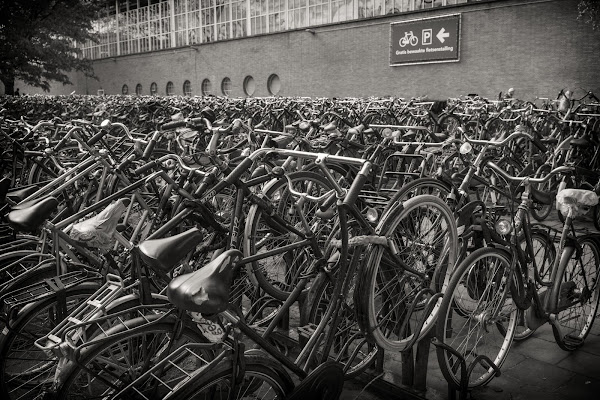 bike parking di bondell