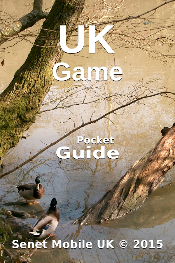 Pocket Guide UK Game- screenshot