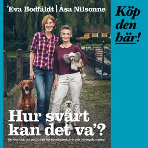 Hur svårt kan det va, Eva Bodfäldt, Åsa Nilsonne
