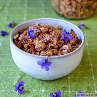 Wild Violet Granola (On Mothers and Mentors)
