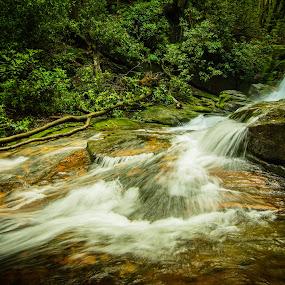 tropic waterfall by James Woodward - Nature Up Close Water ( mountains, georgia, rocks, waterfall, cascade,  )