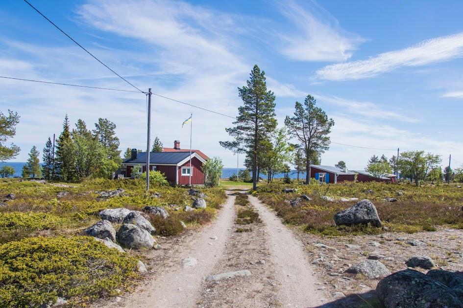 zweeds-lapland-zomer