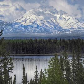 Mt. St,. Elias  by Patricia Phillips - Landscapes Mountains & Hills ( elias, alaska mountains st )