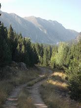 Photo: La piste monte depuis Planès vers l'étang