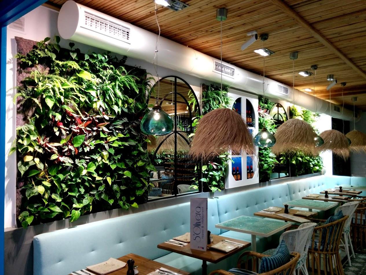 Jardines verticales de interior en Mallorca