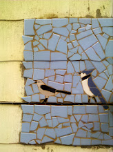 Photo: Bluejay and mockingbird finsihed.