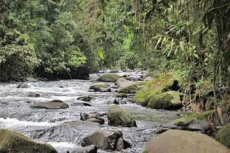 Photo: Otun Quimbaya