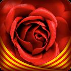 iRosa - Sant Jordi icon