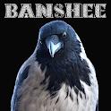 Banshee Spirit (Irish Celtic Faery Mythology) icon