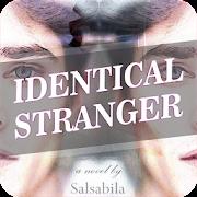 Novel Identical Stranger