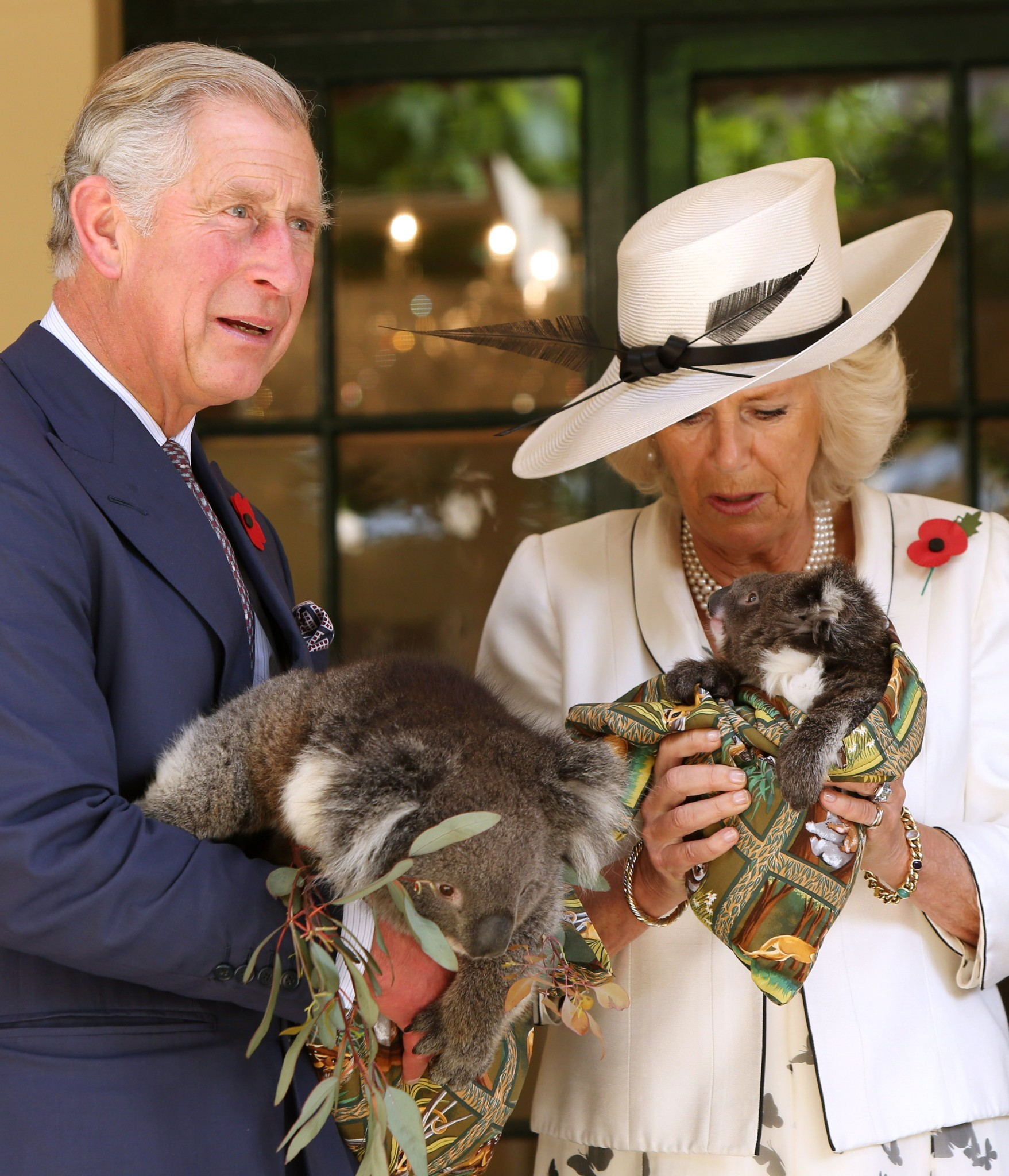 Photo: ADELAIDE, AUSTRALIA - NOVEMBER 07:  Camilla, Duchess of Cornwall and Prince Charles, Prince of Wales hold koalas at Government House on November 7, 2012 in Adelaide, Australia. The Royal couple are in Australia on the second leg of a Diamond Jubilee Tour taking in Papua New Guinea, Australia and New Zealand.  (Photo by Morne de Klerk/Getty Images)