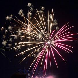 by Madhujith Venkatakrishna - Abstract Fire & Fireworks