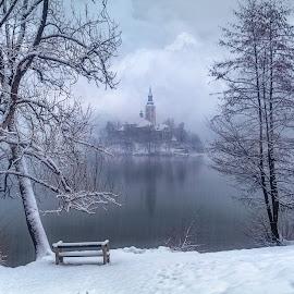 Bled Winter Wonderland by Jimmy Kohar - Landscapes Travel