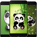 Cute Wallpaper Panda icon