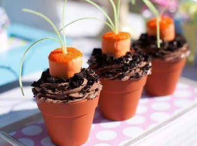 Clay Pot Carrot Garden