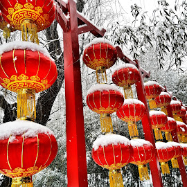 Raise the red lantern by Francisco Little - Instagram & Mobile Android ( red, china, snow, winter, lanterns )