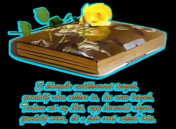 emlek versek idézetek Marika oldala   ** Idézetek Versek / Emlékkönyvbe ***