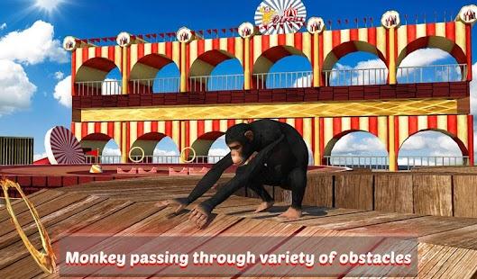 Goat-Monkey-Stunts 13