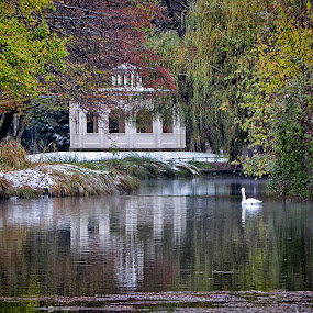 winter in Maksimir by Dunja Kolar - City,  Street & Park  City Parks ( maksimir, croatia, zagreb, winter in maksimir )