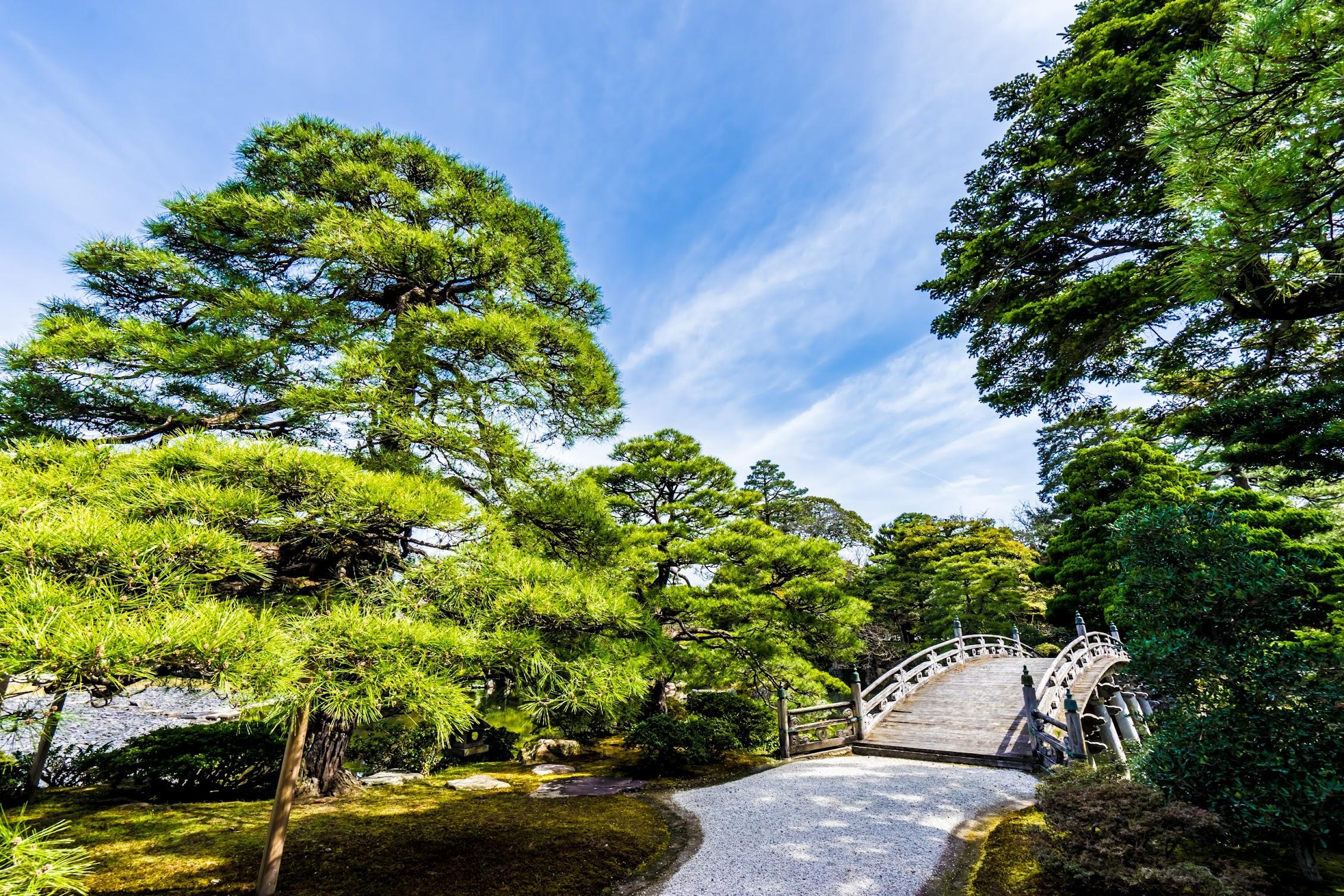 京都御所 御池庭1