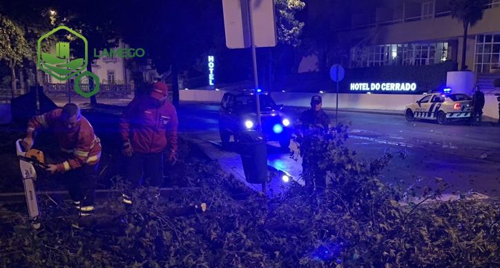 Balanço Leslie: Localidades sem eletricidade,  estradas cortadas, danos na via pública e árvores caídas