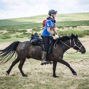 Mongol Derby Finishing the Longest and Toughest Horse Race | Krys Kolumbus Travel Blogs