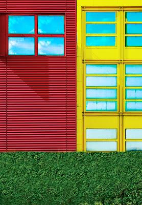 colori in città di Saltini Rino