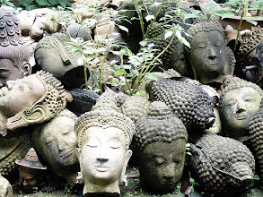 Photo: Heads #WhateverWednesday Curated by +Cicely Robin Laing :- Within the moated walls of Chiang Mai there is a reasonably large walled garden that's open to the public in daylight hours. The garden is owned and operated by a company that makes statues and statuettes. Their main claim to fame is that the statues (once finished) look ancient and resemble things that you would expect to find in long lost temples etc. The garden is where they leave their newly made statues to age in the sun and wind and rain (when there is some). They stress a lot of their work before dumping them in the garden. Here you see a pile of Buddha heads that have already been stressed and left to 'age'.  Photography by Justin Hill ©