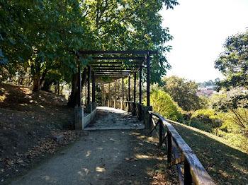Parque Marcos Cela