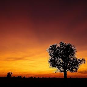 by Valentina Masten - Landscapes Sunsets & Sunrises