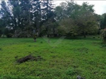 terrain à Droupt-Sainte-Marie (10)