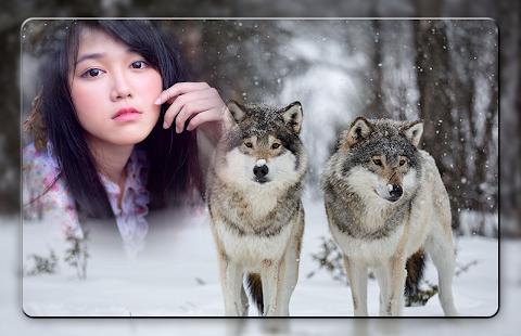 wolf photo frames screenshot thumbnail - Wolf Picture Frames