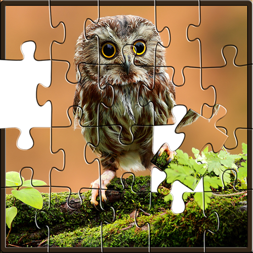 Puzzles for adults Owls