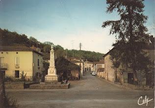 Photo: 82 - Touffailles