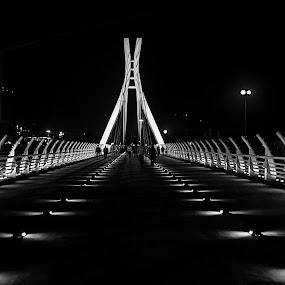 Bridge in Black & White by Niloofar Rezaee - Buildings & Architecture Bridges & Suspended Structures