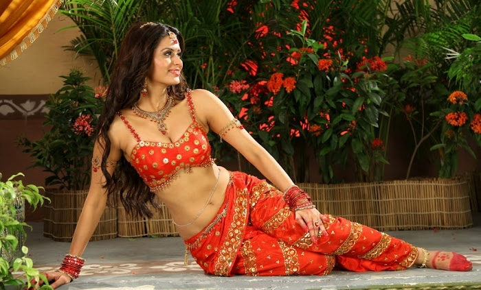 Meenakshi Dixit in tollywood, south actress Meenakshi Dixit hot photos, Meenakshi Dixit HD wallpaper