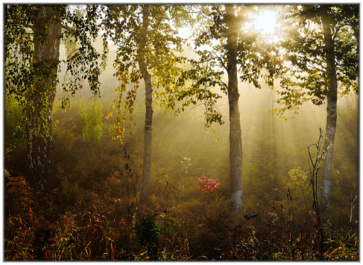 Фотосъемка пейзажей