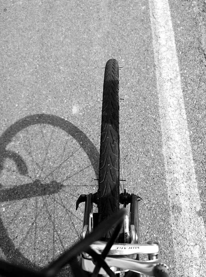 Hai voluto  la bicicletta...  di alessandra_alexa_mylos