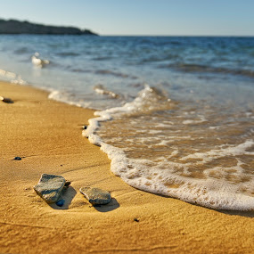 Meanwhile by Souhayl Bk - Landscapes Beaches ( wild, bizert, quietness, waves, tunisia, desert beach, beach )