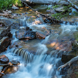 by Kathy Suttles - Nature Up Close Water