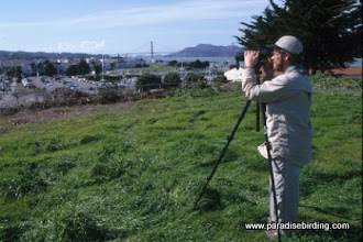 Photo: Steve scopes the fringes of San Francisco from Ft. Mason.