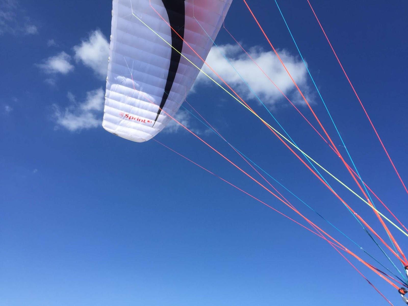 Lightweight paraglider wings