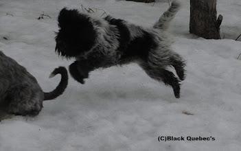 Photo: Jump!