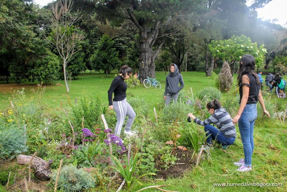 Jardines biodiversos