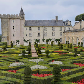 Villandry by Catherine Guerenne - Buildings & Architecture Public & Historical ( red flowers, villandry, french garden,  )