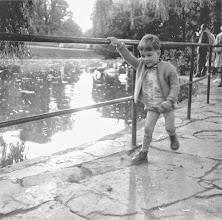 Photo: Sommer 1961: Die Schwäne im Fokus. Im Hintergrund befand sich vor etwa hundert Jahrem am Ufer ein Jugendstil-Pavillon - nach dem Zweiten Weltkrieg wurde auf etwas Vergleichbares verzichtet.