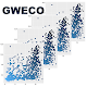 GWECO: Genome-Wide Gene Expression Correlation Download on Windows