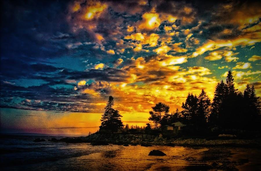 by Tanya Vidal - Landscapes Sunsets & Sunrises ( sunsets )