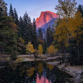 Fall in Yosemite by Evver Gonzalez - Landscapes Mountains & Hills ( camping, mountains, yosemite national park, american west, sony alpha, fall foliage, trees, half dome, travel photography, yosemite, merced river, sunset, sierra nevada, california, autumn, travel, yosemite valley )